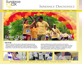 Sundance Diagnostics